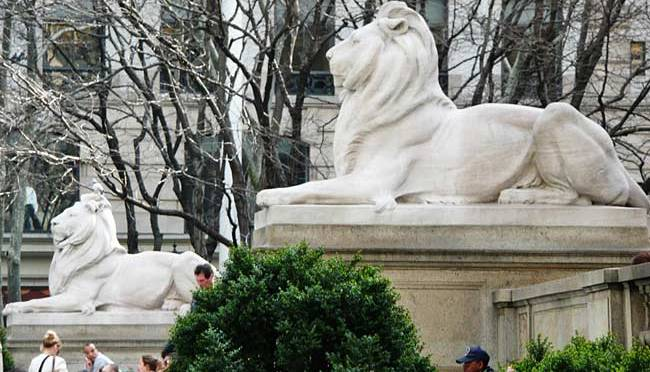 The NYPL Lions